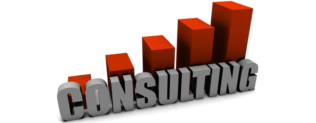 Consultoria en Management